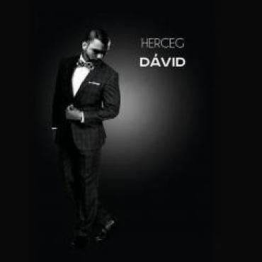 Herceg Dávid - Szerelem, szerelem