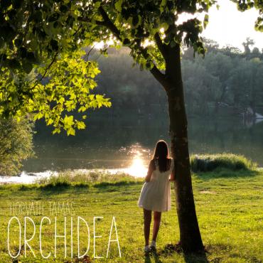 Horváth Tamás - Orchidea